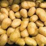 قیمت به روز سیب زمینی همدان