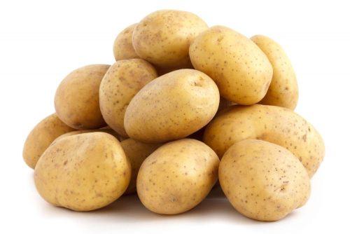 سیب زمینی بذری همدان