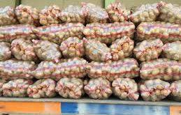 صادرات سیب زمینی همدان